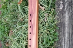 My Cedar Drone 3