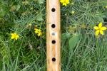 Lone Crow Auction Flute 4