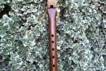 Walnut/Oak Stripe 2