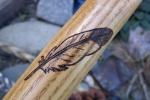 Sassafras mid A432 Feather 4