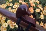 Walnut Bird of Prey